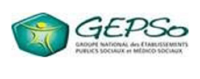 Logo en tête GEPSO