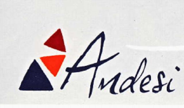 logo en tête ANDESI