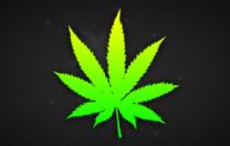 Dépénaliser le cannabis ou pénaliser le moralisme ?
