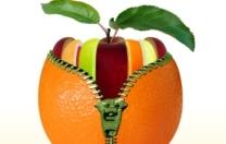 Nécessaire, souhaitable, impossible : la santé et ses paradoxes