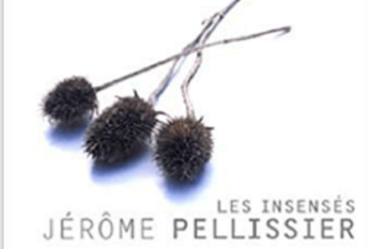 Les Insensés de Jérôme Pellissier